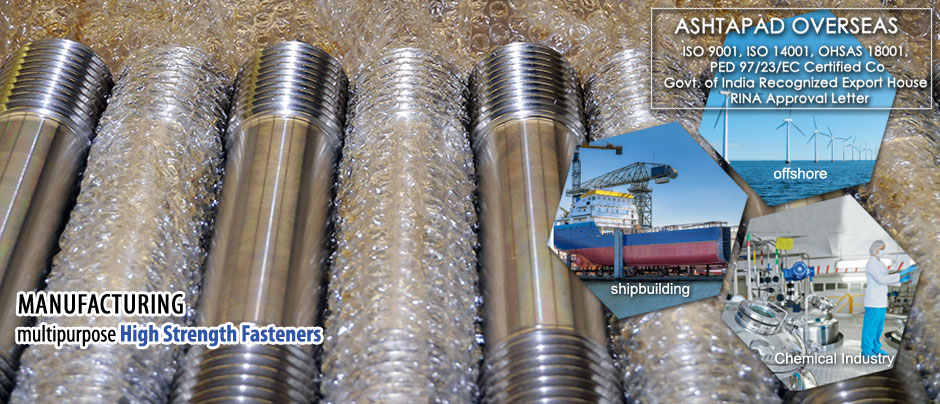 Stainless steel fasteners 304 304L 316 316L nut bolt