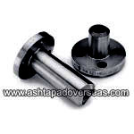Carbon Steel Flanged Buttweld Outlets and Flanged Buttweld Nipple Outlets